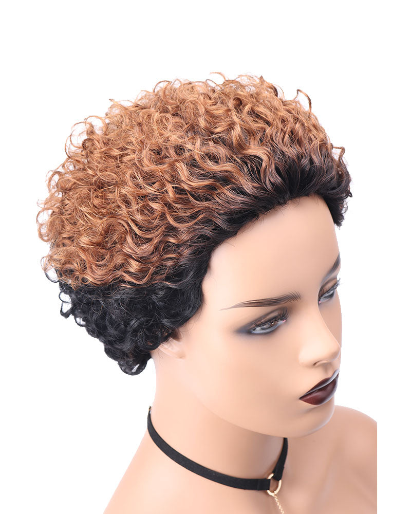 Glenna ombre kinky curly lace wig