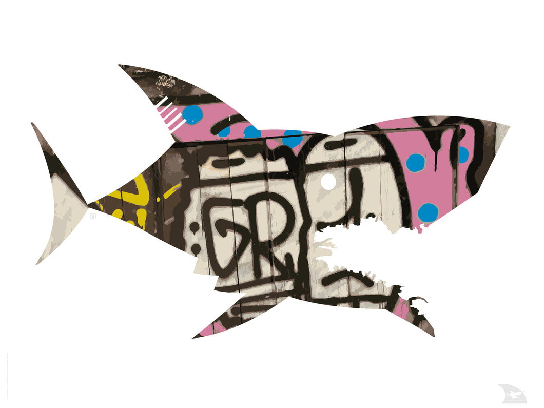 Poster requin Graff 1