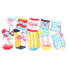 Load image into Gallery viewer, 5 pairs of colorful flamingo women's socks
