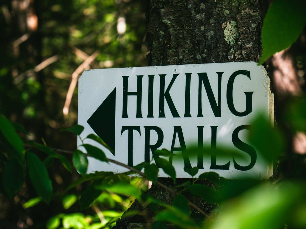 Hiking Trails in Duluth, Minnesota | Duluth Pack