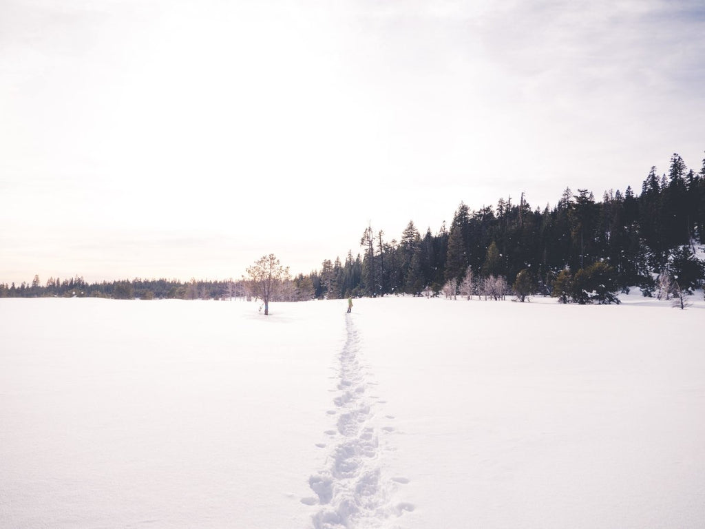 Outdoor Guide: Snowshoeing 101 | Duluth Pack