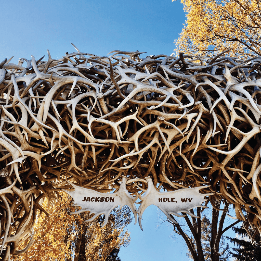 The Best Hiking Trails in Jackson Hole, Wyoming | Duluth Pack