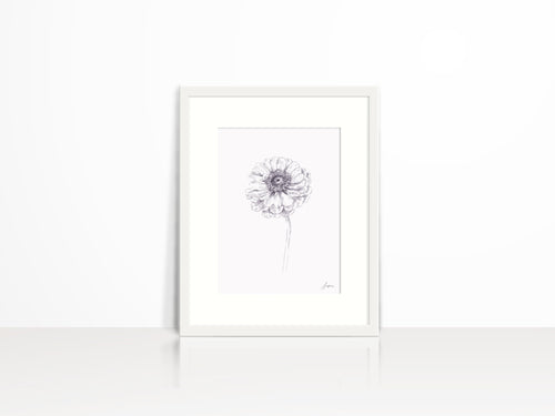 Zinnia Pencil Sketch Art Print