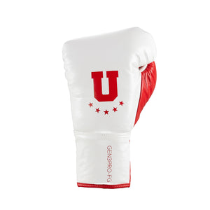 Professional Boxing Fight Gloves Ultimatum Cobra Style I
