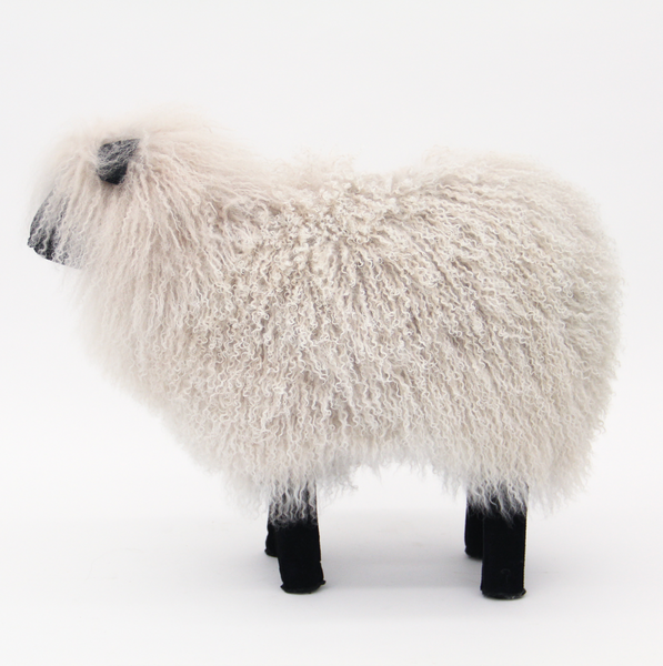 Mongolian Fur Sheep