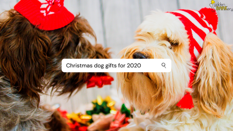 Best Dog Gifts for 2020 Australia
