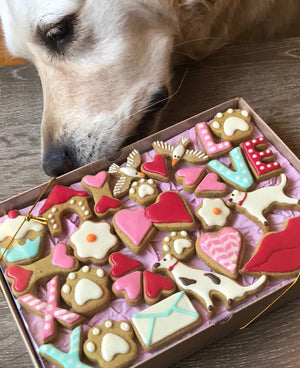 Valentine's Day Dog Treats - Gift Pack of 24 Dog Biscuits