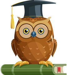The Wriggler Help Them Learn Cognitive Development Crystallised Knowledge Owl image