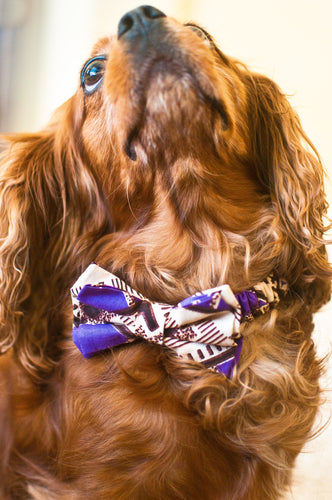 Lion's Thread Handcrafted Bow-Tie -- Purple & Taupe