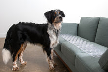 Load image into Gallery viewer, keep dogs off couch