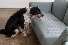 Load image into Gallery viewer, keep dogs off sofa