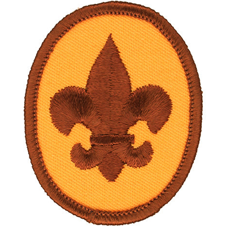 Boy Scout Rank Patch 1973-89 Plastic/Gauze Back