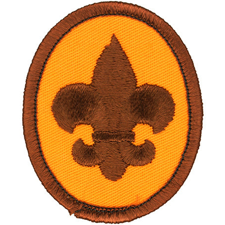 Boy Scout Rank Patch 1973-89 Clear Waffle Plastic Back