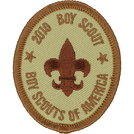 Boy Scout Rank Patch 2010 Tan BSA 2010 Back