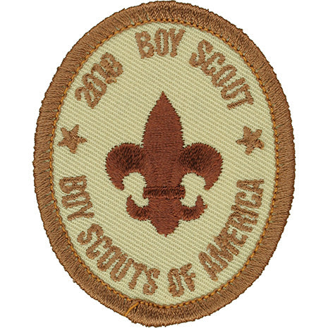 Boy Scout Rank Patch 2010 Tan Scout Stuff Back