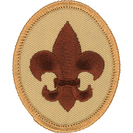 Boy Scout Rank Patch Tan BSA 2010 Back