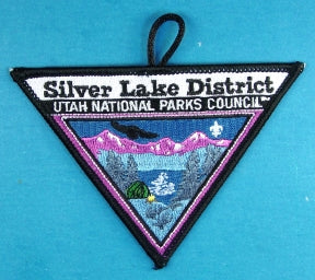 Silver Lake District Patch
