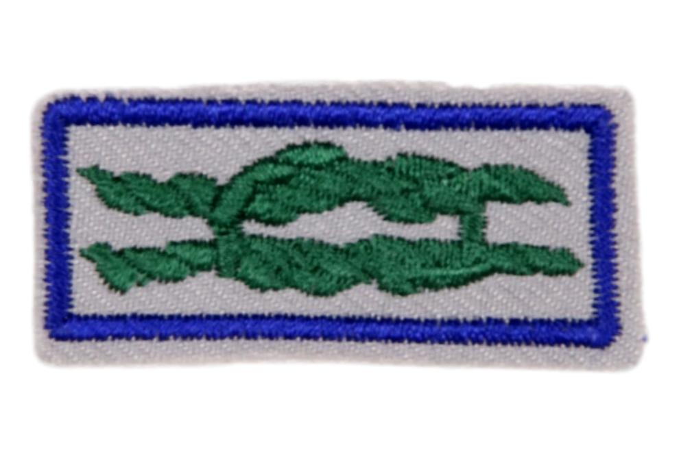 Scouter's Training Award Knot on Gray