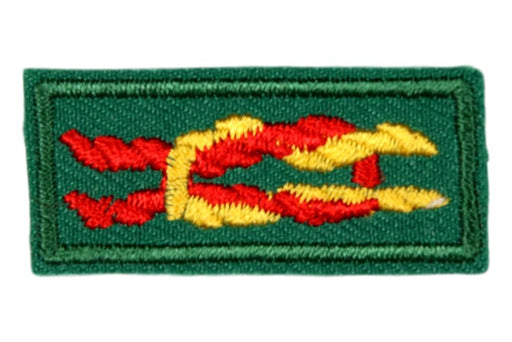 Silver Award Knot Type 1 on Venturing Green