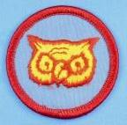 Owl PM Full Color Plastic Back