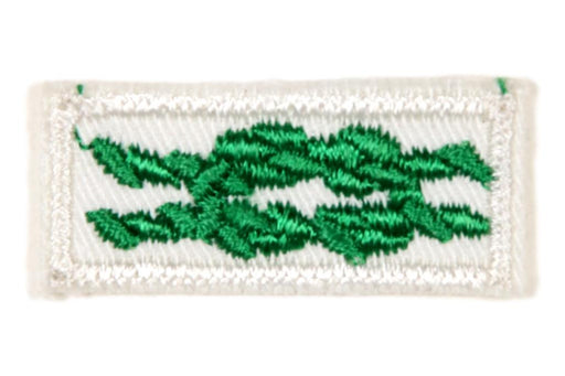 Scouter's Training Award Knot on White