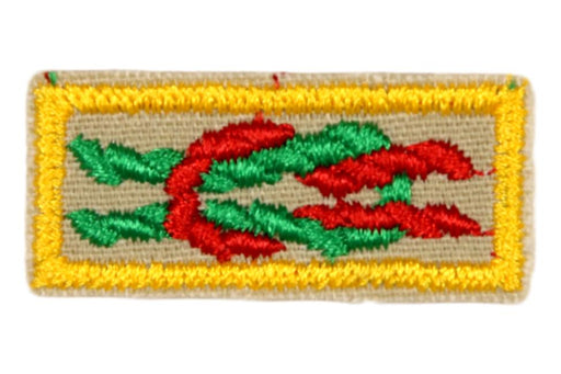 Arrow of Light Award Knot