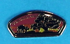 Ouachita Valley CSP Pin