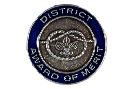 District Award of Merit Pin