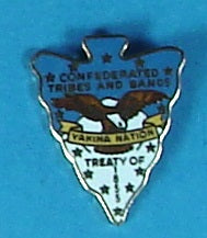Treaty of Tribes and Bands 1855 Pin