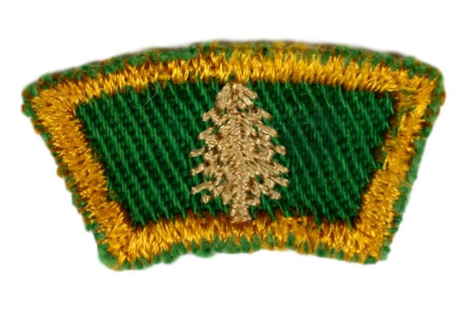Senior Scout Title - Scout Forester