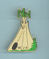 1994 Section W2A Conclave Pin