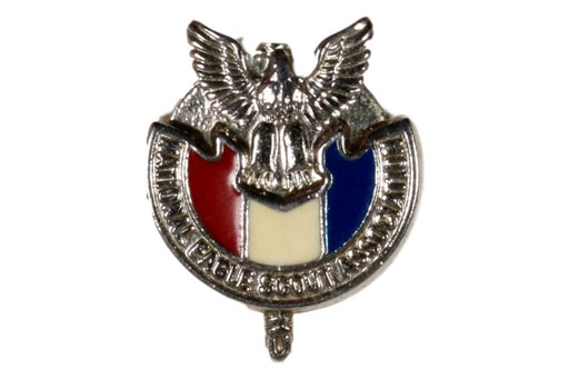 National Eagle Scout Association Pin