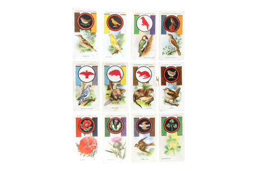 Boy Scout Tobacco Card Set