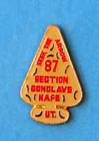 1987 Section W2A Conclave Participation Pin