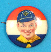 Pin Back Cub Scout