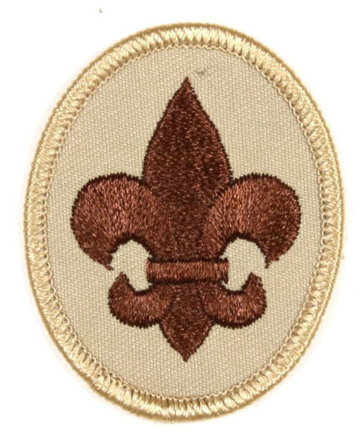 Boy Scout Rank Patch 1990-2008 SSB