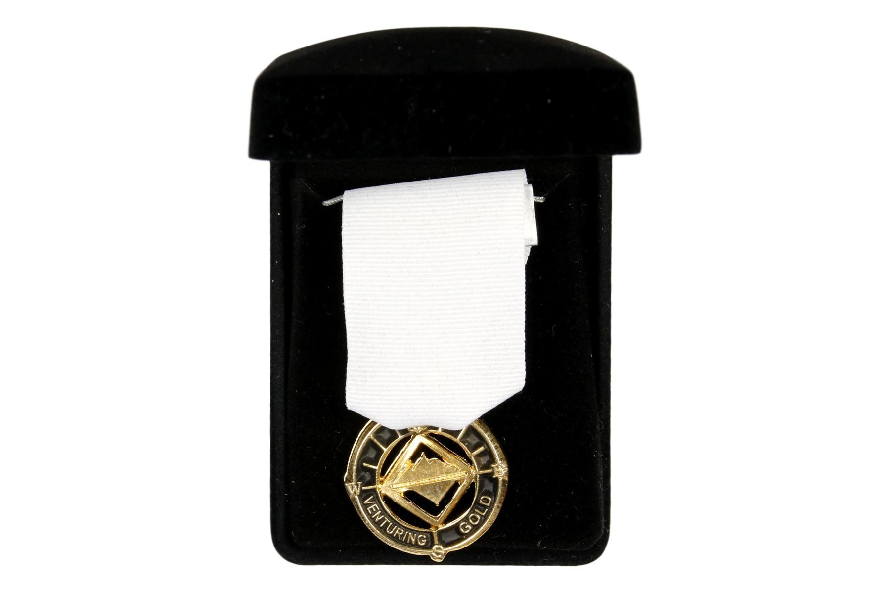 Venturing Gold Award Medal Black Highlights