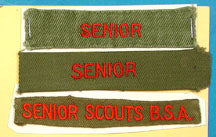Senior Scout Shirt Strip Card of Three