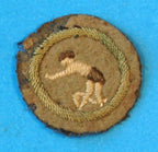 Swimmer Merit Badge