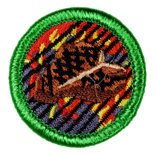 Grilling Merit Badge