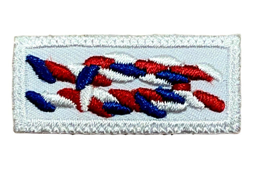 Eagle Scout Knot on White