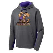 GOOO CAMELS! Fleece Colorblock Hooded Pullover