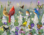 Paint By Numbers - Meadow Menagerie