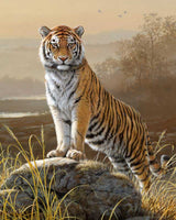 Paint By Numbers - Majestic Tiger