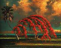 Poinciana On The River