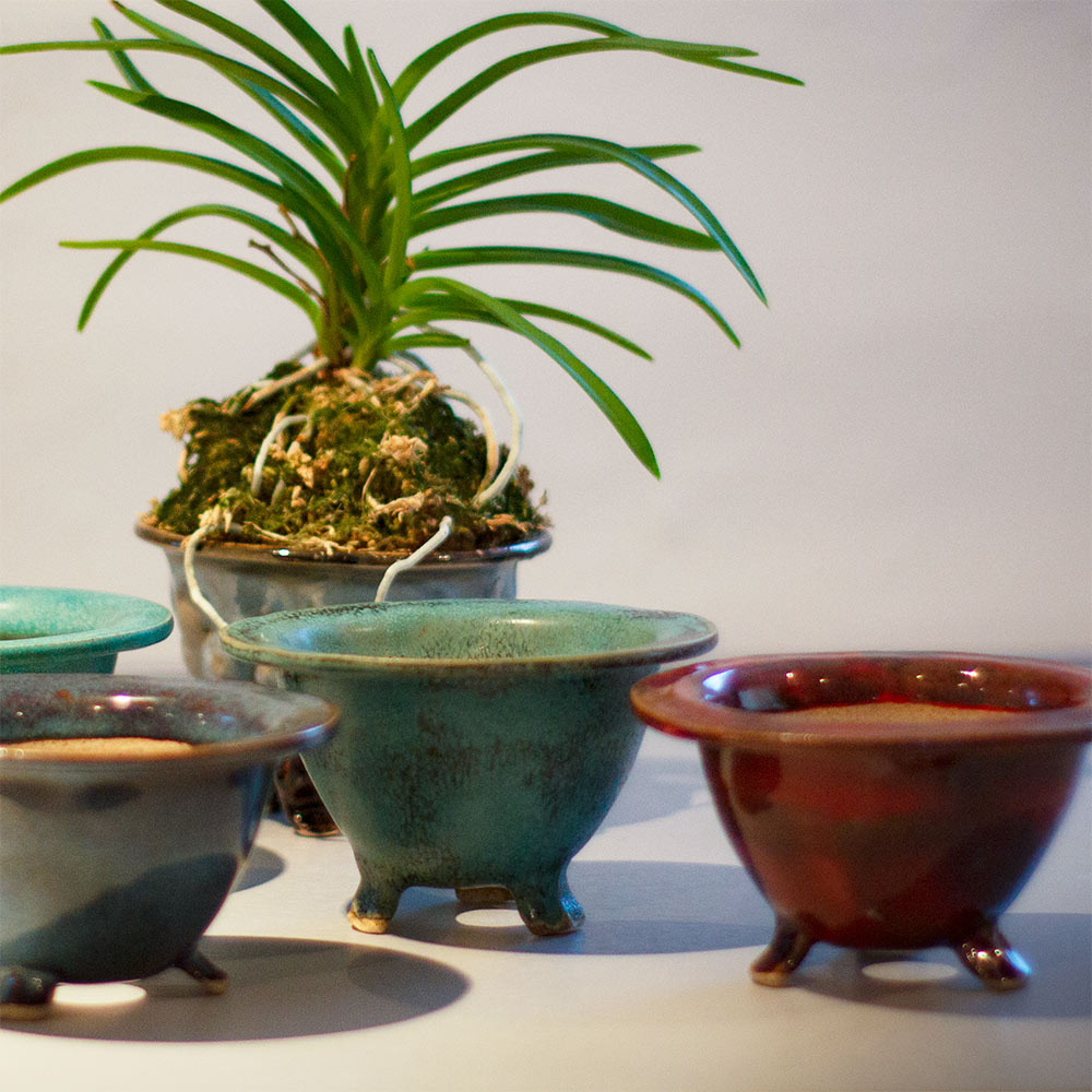 Handmade Pot (An Orchid Classics Exclusive)