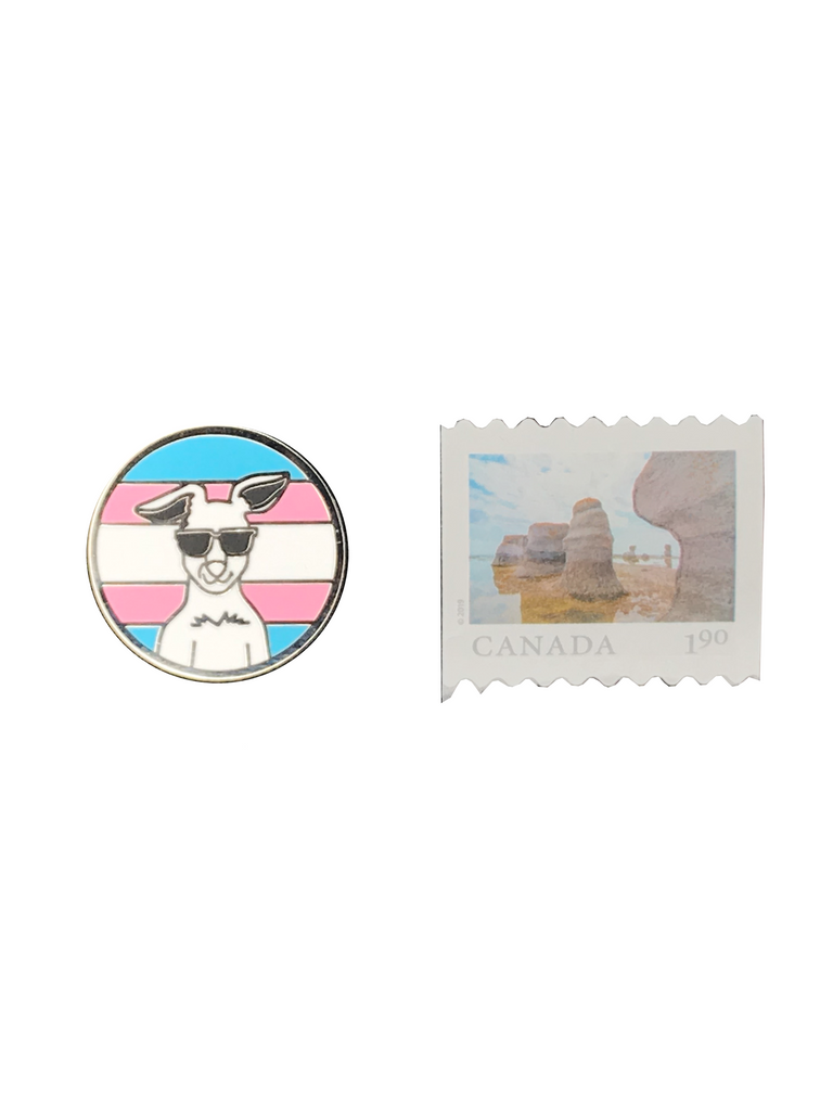 Showing the Get Your Joey magnetic lapel pin is about the same size as a stamp