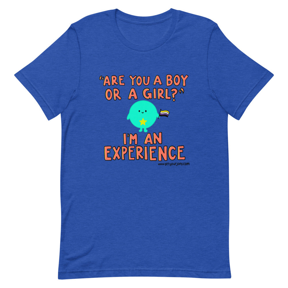 "Orange text reads ""Are you a boy or a girl?"" I'm an experience. With a round bright blue cartoon person holding a non binary pride flag"