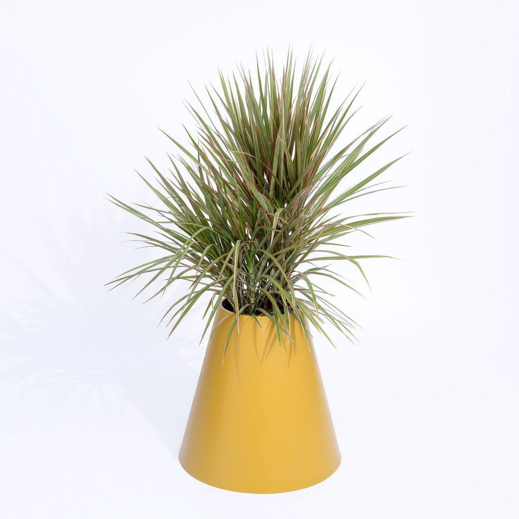 Cone Planter by PIECES by an Aesthetic Pursuit