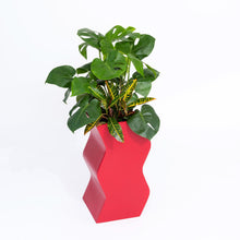 Load image into Gallery viewer, Curvy Planter by PIECES by an Aesthetic Pursuit